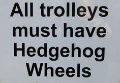 We like hedgehogs!