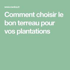 Comment choisir le bon terreau pour vos plantations