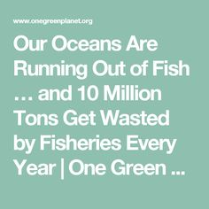 Our Oceans Are Running Out of Fish … and 10 Million Tons Get Wasted by Fisheries Every Year - Our oceans long been raped now factory ships are ensuring NOTHING is left for those starving in the World !