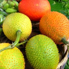 Very Thai Fruit