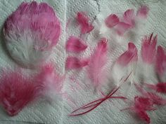 Beyond A Veil: How To: Dye Feathers. rit fuchsia.