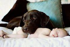 guarding my baby.....