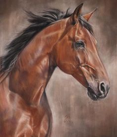 """Gogo"" Pastel on velourpaper (commission) - pastellblicke Horse Photos, Horse Pictures, Horse Drawings, Animal Drawings, Horse Artwork, Horse Portrait, Cowboy Art, Animal Sketches, Equine Art"
