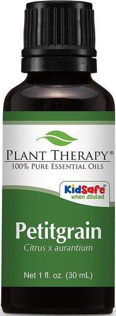 Plant Therapy Niaouli Essential Oil 100 Pure Undiluted Therapeutic Grade 30 ml 1 oz *** Visit the image link more details. Plant Therapy Essential Oils, Thyme Essential Oil, Essential Oils For Colds, Vanilla Essential Oil, Bergamot Essential Oil, Organic Essential Oils, Essential Oil Blends, Niaouli Essential Oil, Essential Oil Distiller
