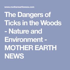 The Dangers of Ticks in the Woods - Nature and Environment - MOTHER EARTH NEWS