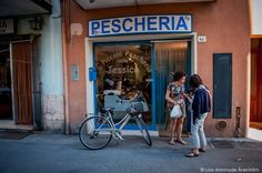 """""""Hanging with Cesenatico's Fishmongers"""" by @lolaakinmade"""