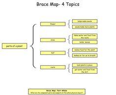 brace map template.html