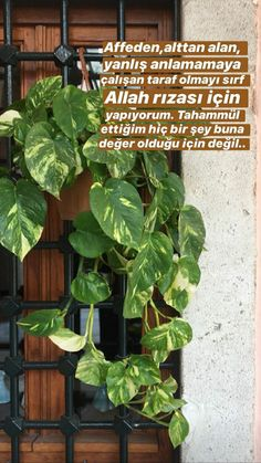Fake Pictures, Allah Islam, Galaxy Wallpaper, Islamic Quotes, Beautiful Words, Diy And Crafts, Plant Leaves, 1, Outdoor Structures