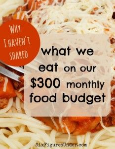 When people learn that our family of six has a $300 grocery budget, they want to know what we eat. Readers have been asking and I still haven't delivered. So what has been holding me back?