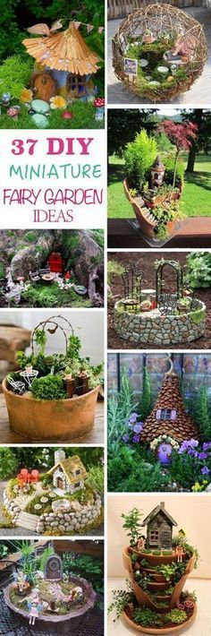 Find out how to make a DIY miniature fairy garden and get ideas for this enchanting and fascinating garden trend, suitable for both kids and adults. #garden #gardening #gardenideas #fairyhouses #fairygarden