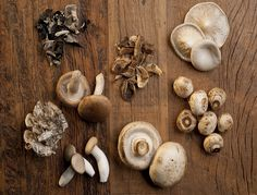 How Long do Mushrooms Last - Fortunate Kitchen