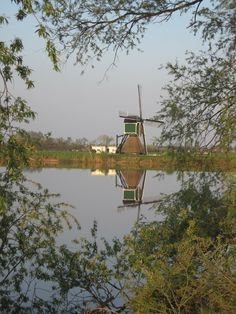 View of the Weijpoortse molen, built in 1674.  The Weijpoortsche Mill is an historic water mill located on Weijpoort in the town of Nieuwerbrug. The mill was built in 1674, and is of a traditional 'wipmolen' design. The wipmolen is the oldest for of mill in the Netherlands. The Weijpoortsche Mill is now owned by the Rhineland Mill Foundation. The foundation restored the mill in 1995. The Weijpoortsche Mill can regularly be seen in operation.