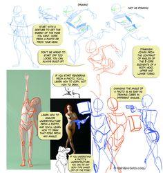 "#Tutorial ""Notes on Gesture and Photo Ref"" by Fyuvix.deviantart.com on #deviantART"