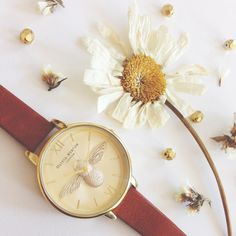 Good news for fans of our Moulded Bee styles! You can snap up our brand new Tan and Gold style now <3 #oliviaburton
