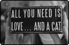 So true...  #cat