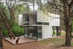 House is a concrete holiday home designed by Argentinian architect Luciano Kruk. The house is located in a pine forest near Buenos Aires. Cabinet D Architecture, Architecture Design, Sustainable Architecture, Residential Architecture, Tyni House, Casas Containers, Cabin In The Woods, Concrete Houses, Glass Houses