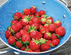 Sweet, juicy and blissfully bite-sized, homegrown strawberries embody everything we love about eating from the summer garden. Get your fresh red beauties performing deliciously in these dishes both sweet and savory.