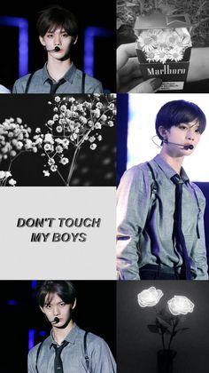 Jinyoung, Kpop Wallpaper, Tumblr Wallpaper, Boys Who, Bad Boys, Bae, Lee Daehwi, Kim Jaehwan, Ha Sungwoon