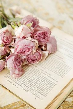 Dried pink roses and a book...... #flowers #decorative