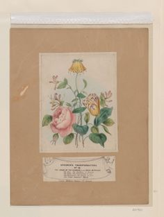 The Union of the Flowers of the Royal Marriage, c.1841-47, William Spooner; the rose symbolise beauty; the tulip, a declaration of love; honeysuckle, bonds of love; and a crown imperial representing majesty; held up to the light, the floral group reveals a scene of the marriage of Queen Victoria and Prince Albert. (Royal Collection Trust/© Her Majesty Queen Elizabeth II 2015)