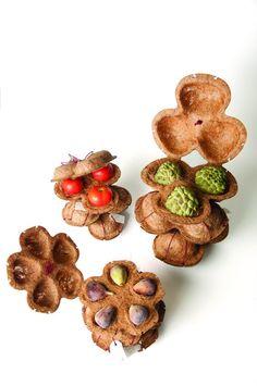 Grande ideia: Botiá, fibra de coco para embalagem biodegradável  –   Tendências