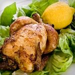 Herb Roasted Chicken with Lemon- All Phases