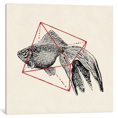 'Fish in Geometrics III' by Florent Bodart Graphic Art on Wrapped Canvas