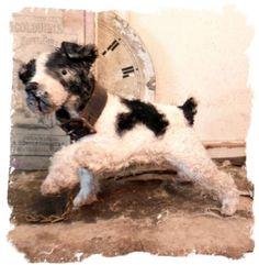 Antique Style Terrier Dog Offset Legs Bent Leg Vintage by Whendi Bears   eBay