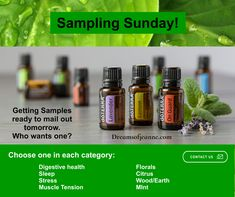 Doterra Essential Oils, Health And Wellness, Stress, Mint, Personal Care, Peppermint, Self Care, Health Fitness