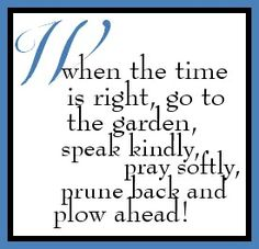 When the time is right, go to the garden, speak kindly, pray softly, prune back and plow ahead! quote To …