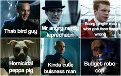 I showed my mum some of the gotham villains and asked her to name them. I shouldn't find this as funny as I do