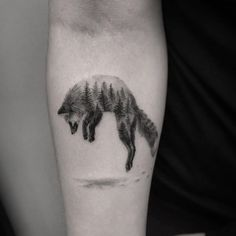 Fox by Max