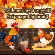 Good Morning, Have a nice day Good Morning Good Night, Good Morning Quotes, Good Day, Share Pictures, Funny Pictures, Funny Pics, Animated Gifs, Rooster, Greeting Cards
