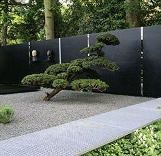 Sichtschutz- und Gartendesign (Garten- und Ideenbücher BJVV)