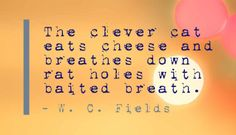 The clever cat eats cheese and breathes down rat holes with baited breath. - W. C. Fields
