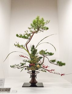 Photo by Takuya Tokumochi Ikebana Flower Arrangement, Ikebana Arrangements, Floral Arrangements, Japanese Plants, Japanese Flowers, Japanese Art, Fresh Flowers, Dried Flowers, Beautiful Flowers