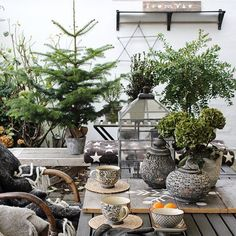 """4,393 mentions J'aime, 88 commentaires - Kirsten Skovbon (@skovbon) sur Instagram : """"In the middel of the Christmas preparations we ended up in the patio with a cup of tea - what a…"""""""