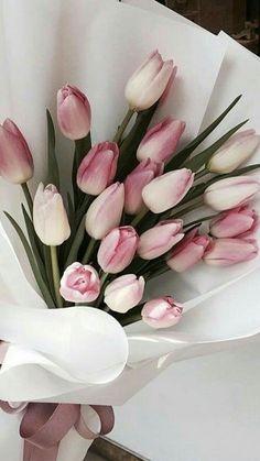 Pink Tulips, Tulips Flowers, My Flower, Pretty Flowers, Pink Roses, Flowers Nature, White Tulips, Ruth 4, Tulips Garden