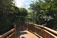 Riviera Maya QR Mexico Resort Spa - Spatium Luxury Spa - Best Spa Resort in Mexico. Riviera Maya most beautiful luxury resort. Spa Offers, Riviera Maya, Amazing Destinations, Resort Spa, Hotels, Deck, Vacation, Luxury, Outdoor Decor