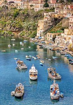 Marina di Corricella (Napoli, Italy)\ My heritage on my Mom's Side of the family. Gorgeous to visit and see it in person.