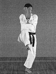 Imagen relacionada Martial Arts, Combat Sport, Martial Art
