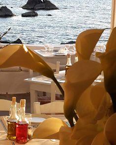#seasatin #seasatinmykonos #capriceofmykonos #seasatinrestaurant #restaurant #greece #mykonos #lunch #dinner #mediterraneancuisine #food  #greekstyle #mediterranean #greekrestaurant #tablesettings #foodphotography #greekfood #restaurantofmykonos #greekislands Natural Interior, Mykonos Greece, Windmill, Greek, Satin, Restaurant, Sea, Marketing, Interior Design
