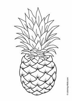 Pineapple fruit, vector fruit
