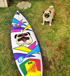 Pup inspired board art!