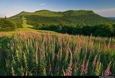 Poland, Bieszczady by trojnartomek, via Flickr