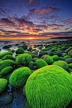 Hvaleyri Beach, Iceland