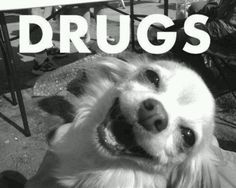 Will fetch for percocet.....lol