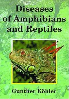 Diseases of Amphibians and Reptiles: by Gunther Köhler http://www.amazon.com/dp/1575242559/ref=cm_sw_r_pi_dp_OMgMub16J59M5
