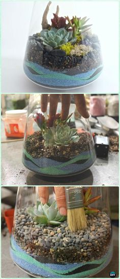 DIY Sand Art Terririum Ideas Projects & Instructions: Layered Sand Terrarium, Beach Themed, Dessert Themed Terrarium, Sand Succulent or Zen Garden