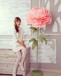 Liona Flowers